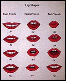 Vowel Lip Position